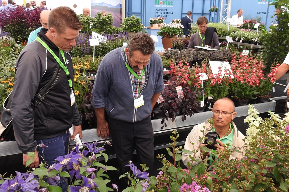 Garden Trials and Trade toont topinnovaties houtige gewassen en vaste planten