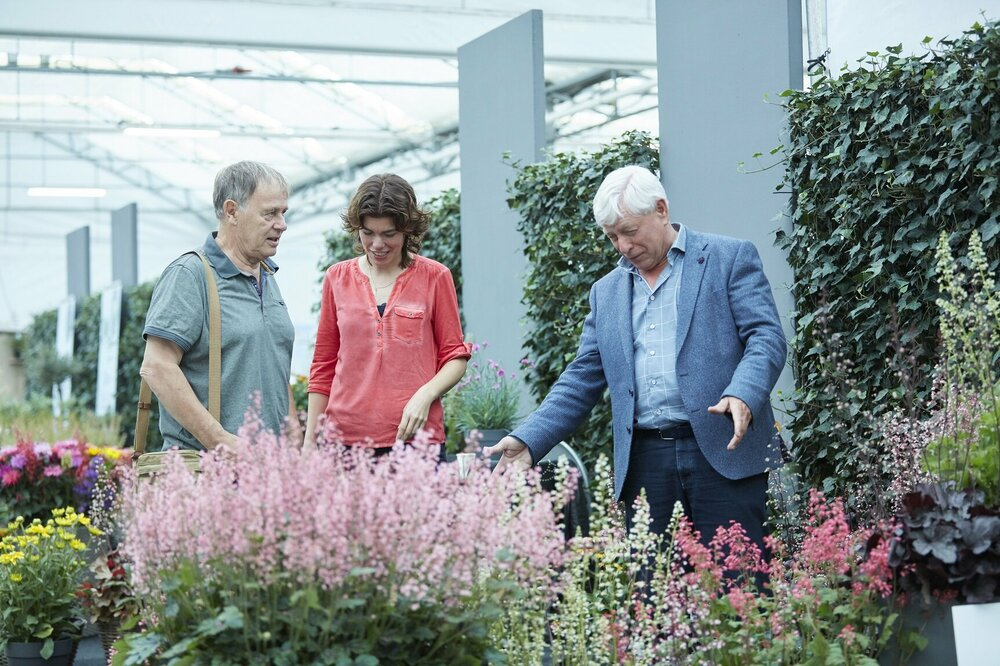 Second edition of Garden Trials and Trade from 11 to 13 June 2019