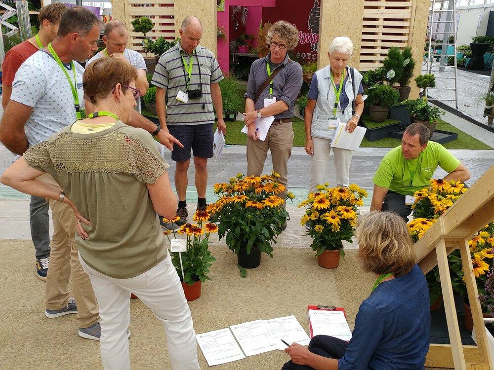 Nieuwighedenkeuring tijdens Garden trials and Trade