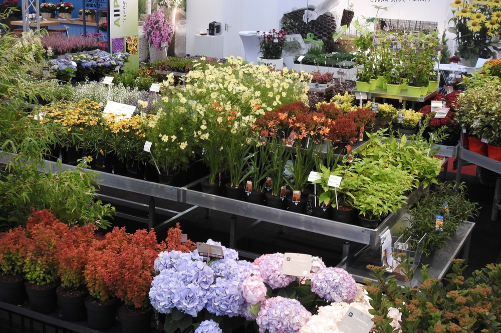 Garden Trials and Trade: Innovations and novelties from 34 companies at a single location!
