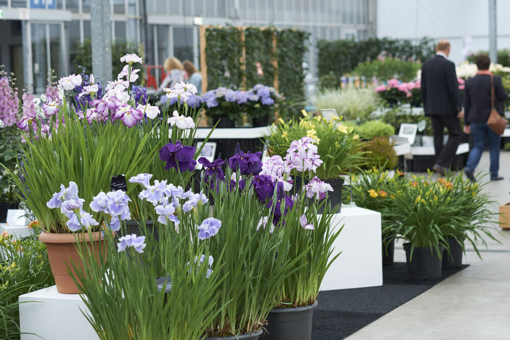 Garden Trials and Trade 2020 is Taking the Next Step